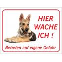 """Saarlooswolfhund (Welpe) """"Hier wache ich""""-Schild (rot)"""