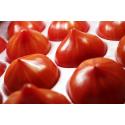 Foto auf Plexiglas - Essen