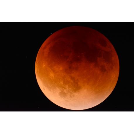 Foto auf Plexiglas - Mond