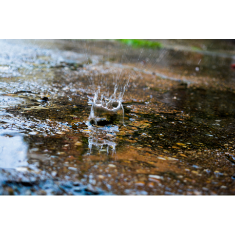 Foto auf Plexiglas - Regen