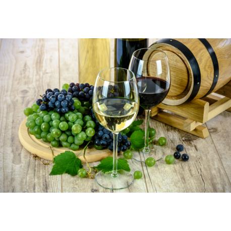 Foto auf Plexiglas - Wein