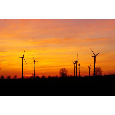 Foto auf Plexiglas - Windmühle