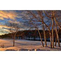 Foto auf Plexiglas - Winterlandschaft