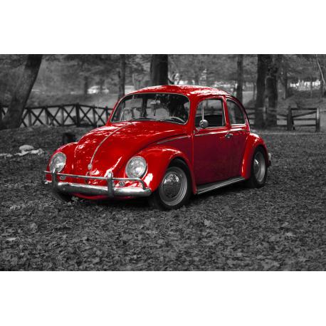 Foto auf Plexiglas - VW Käfer