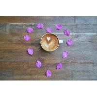 Foto auf Plexiglas - Kaffee