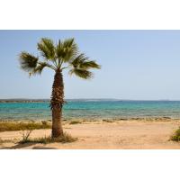 Zypern - Foto auf Plexiglas