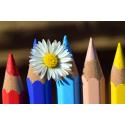 Foto auf Plexiglas - Farbstifte