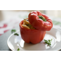 Foto auf Plexiglas - gefüllte Paprika