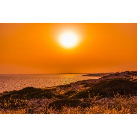 Foto auf Plexiglas - Sonnenuntergang am Meer