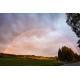 Foto auf Plexiglas - Regenboog