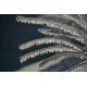Foto auf Plexiglas - Wintertakken