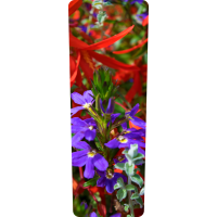 Mülltonnenaufkleber (Blumenbeet)
