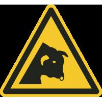 """Schilder """"Warnung vor dem Stier"""""""