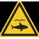 """Aufkleber """"Achtung Haie"""""""